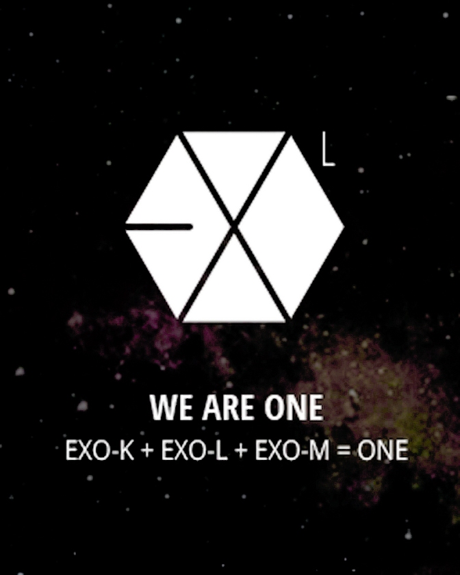 The unity of EXO-Ls really creates something magical!